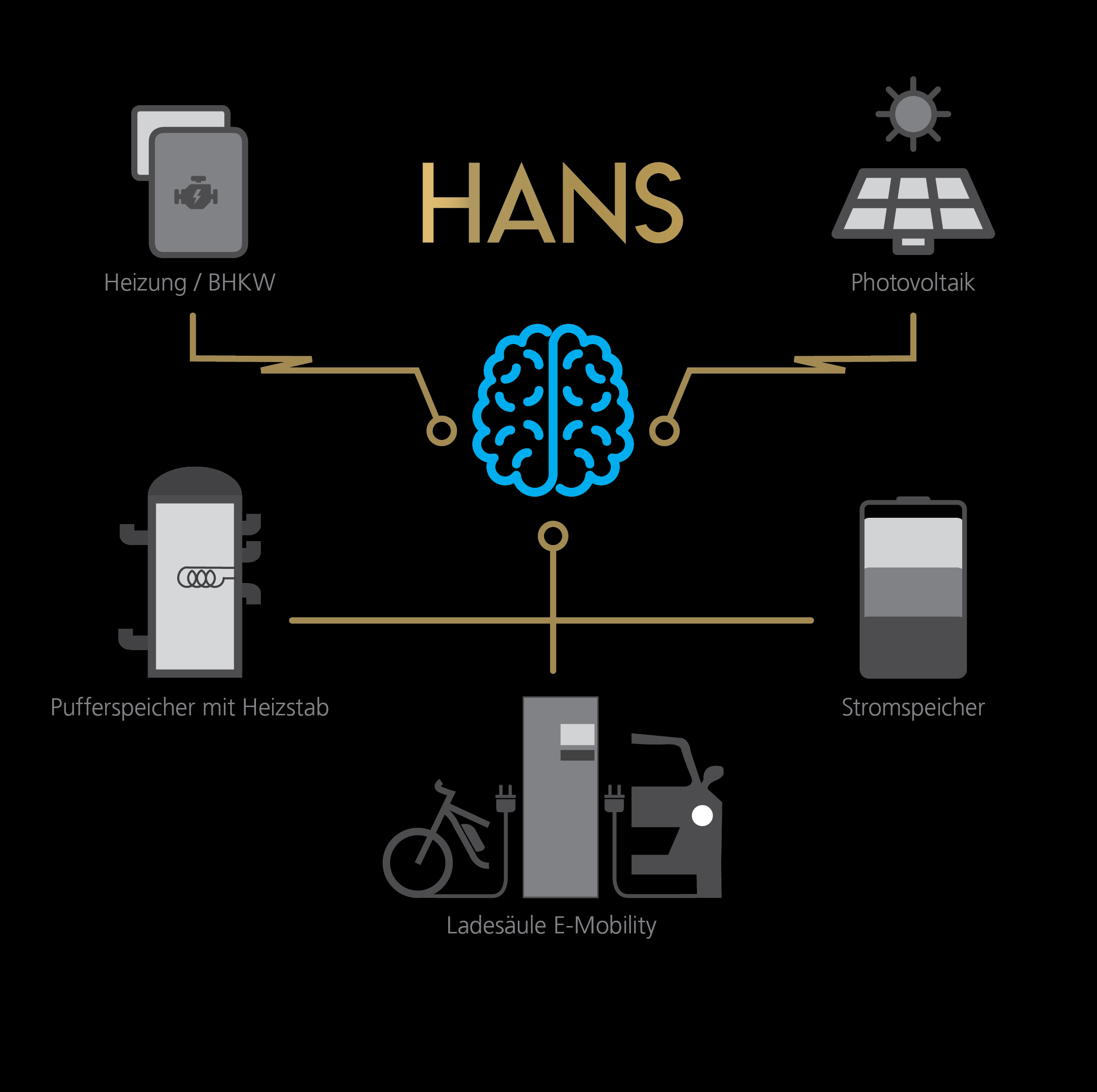 Hans Energiemanagement Grafik